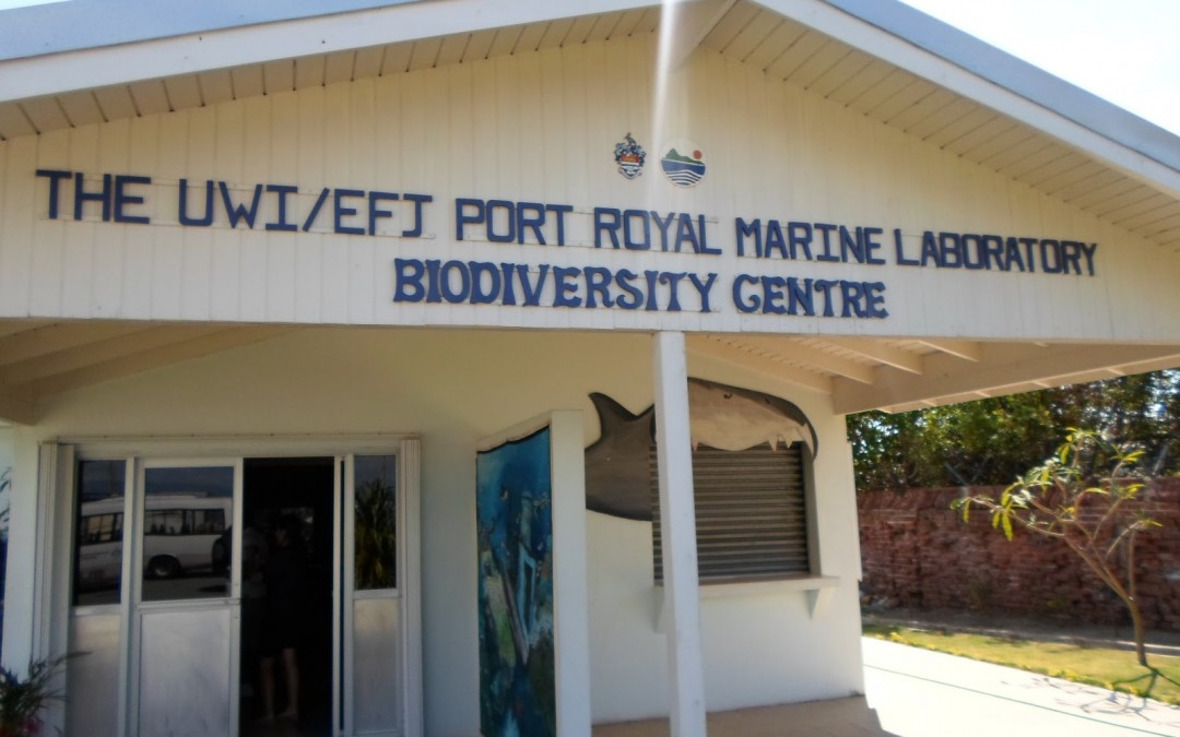 YOU Trip to UWI Marine Laboratory